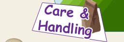 Care and Handling